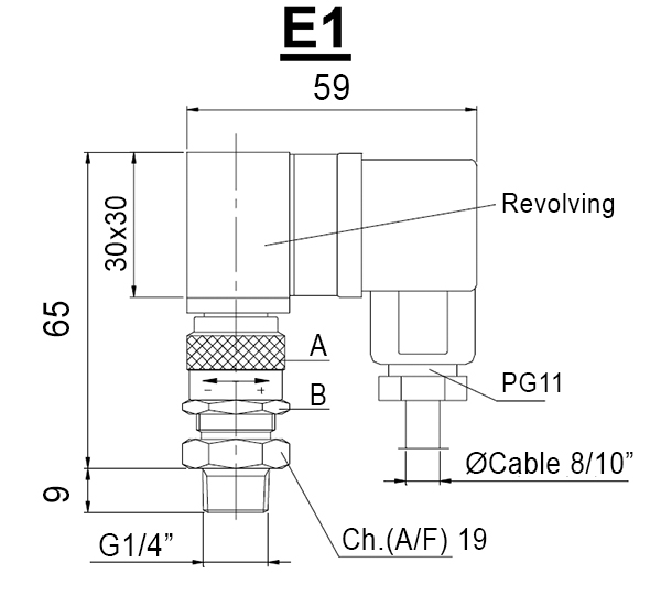 E1-INDICATORS